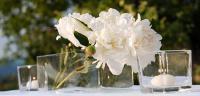 svadba Zilina,  svadobná výzdoba žilina, návleky žilina